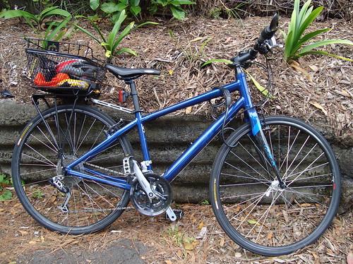Mt Victoria Bike