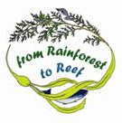 rainforest graphic