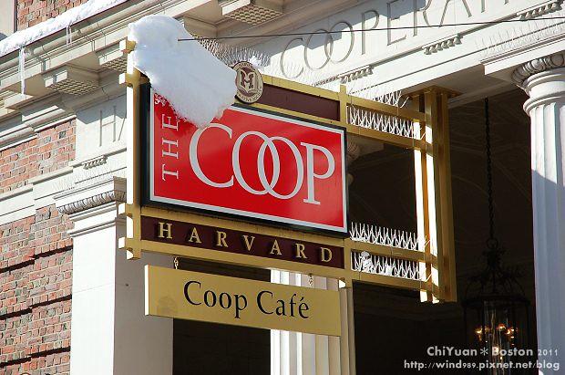 The Coop06.JPG
