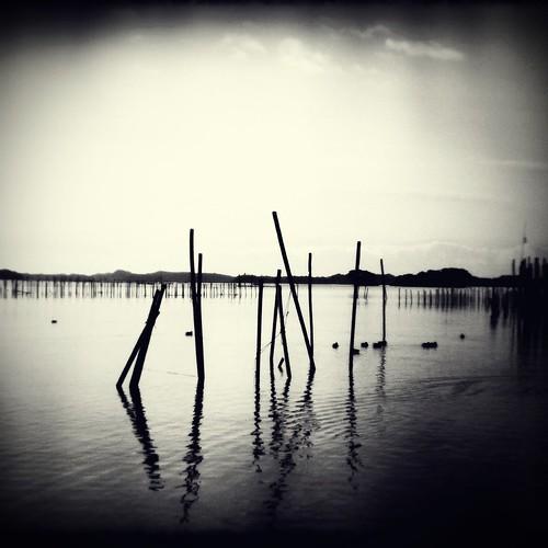 Pole in sea