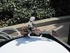 Animated Endor speeder bike