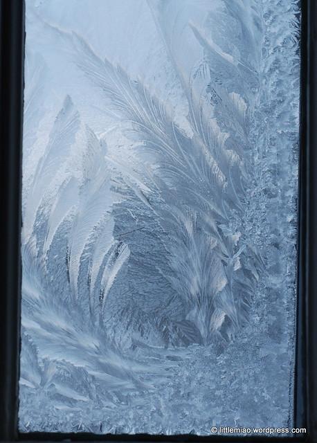 ice window 2-2-2011 7-32-20 AM