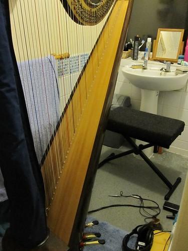 Harp in bathroom