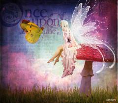 Fairy's toadstool