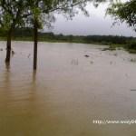 Pengalaman Semasa Banjir Dua Hari Lepas