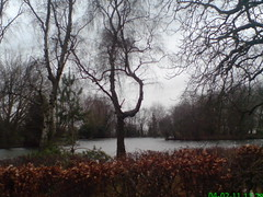 The Lake, Alexandra Park and Palace, Early Feb 2011