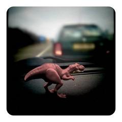 Traffic Jam Dinosaur...