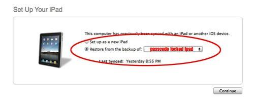 iPad Bypass 05