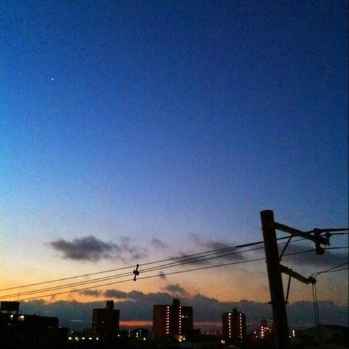 (^o^)ノ < おはよー! 大阪、夜明け前です。