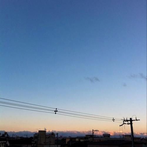 おはよー! 今朝の大阪、快晴です。