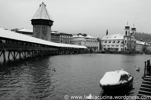 Wintergemüsekurs 0_2011 01 22_1791