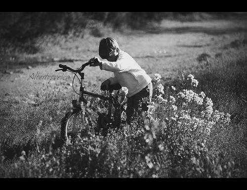 (79/365) Fuera de pista by albertopveiga