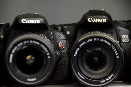 Canon Rebel T3i EOS 600D vs Canon 60D