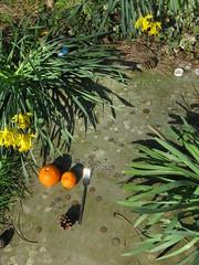 Ludwig Wittgenstein's grave