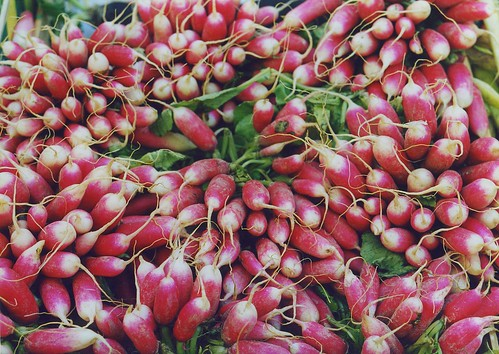 Paris radishes