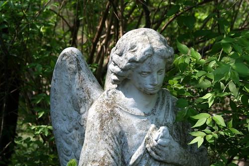Greyson's Angel