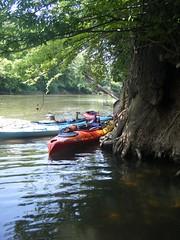 Saluda River Paddle-53