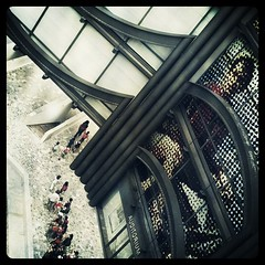Iphoneography IMG_1502