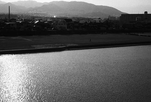 近所の川。