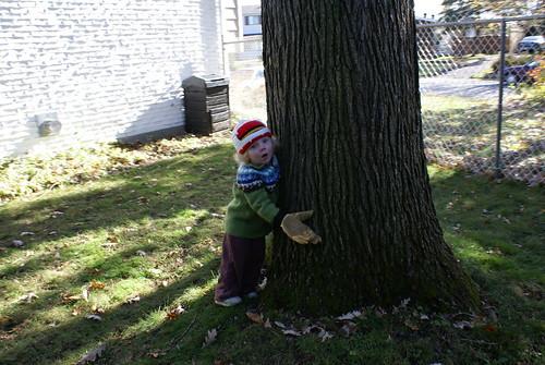 treehugger2