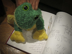 plush frog on guest book