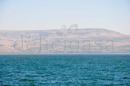 Capernaum (1 of 1)-10