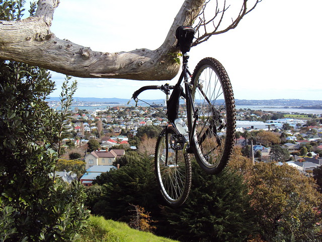 Hang'n out in Devonport