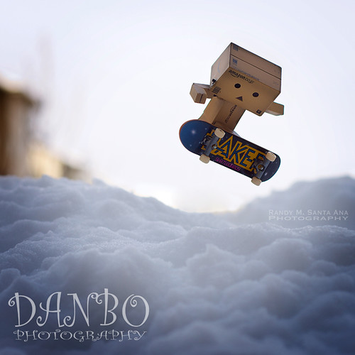 136/365:  Danbo Family Portrait Series:  Catching Some Air!