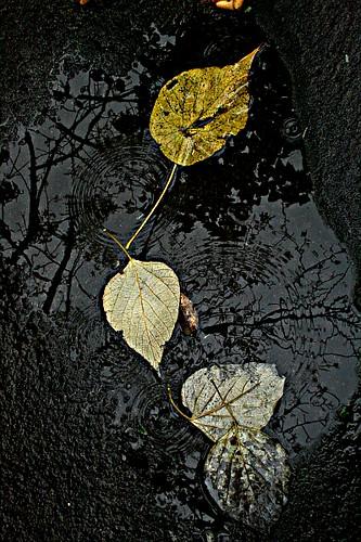 Camiguin-March2011 212