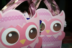 Owl Easter boxes