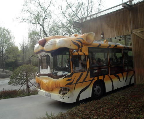 Safari World tour bus