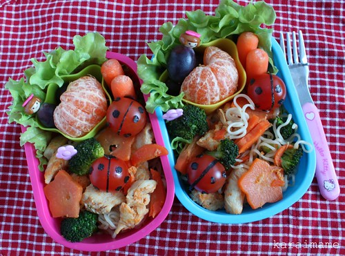 Chicken stir fry bento