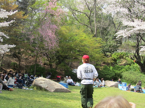 Pizza delivery guy at Hanami