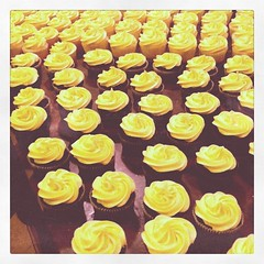 Cupcake hell. Kill me.