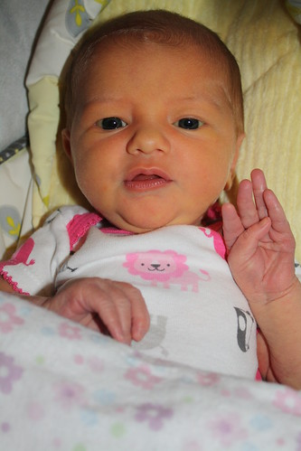 zoe's first month 946