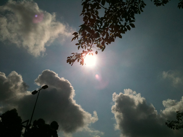 早晨,天氣多好。