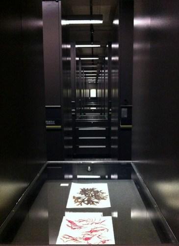 Beaty Museum - Vast amount of storage