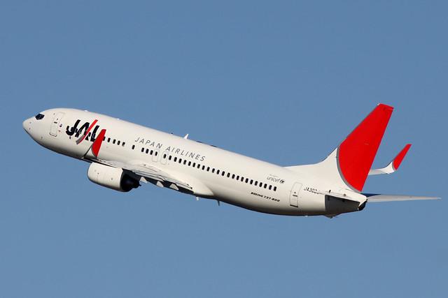JAL B737-800(JA302J)