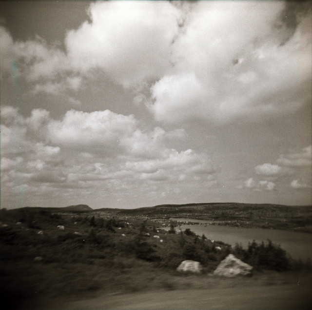 Holga 120 | Fuji NP 400 PR / Developed in D-76 (1:0)