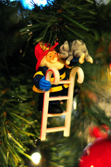 Santa & a Cat