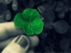 A best friend is like a four leaf clover,hard to find and lucky to have.