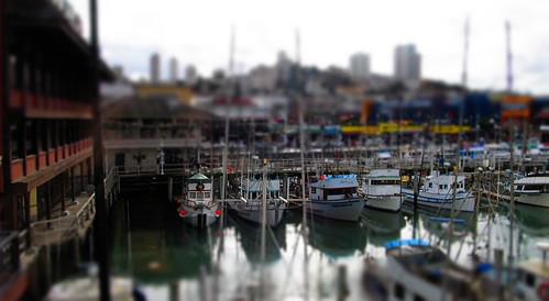 sf boats1