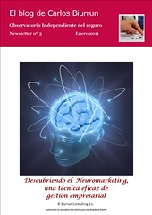 Neuromarketing en la empresa aseguradora (e-letter nº 3)