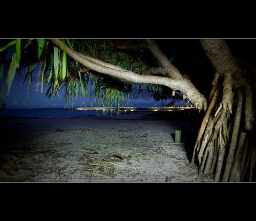 183 / 365 - Pandanus Beach