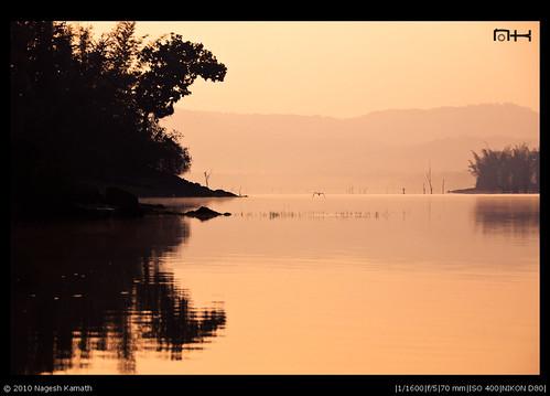 Orange Morning | Kabini