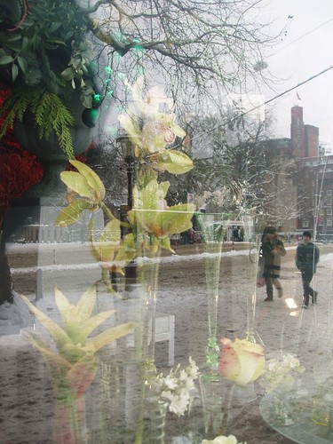 201012190074_Amsterdam-florist-reflections