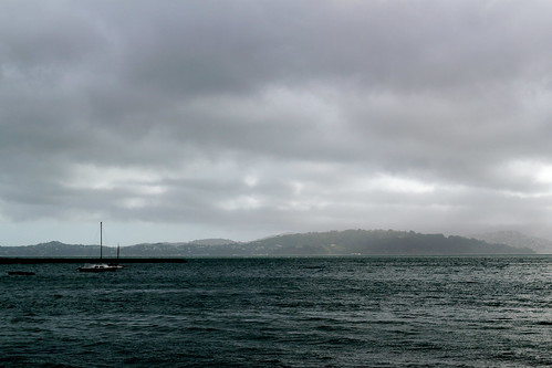 Friday: The Bay