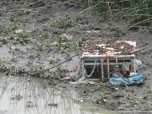Armario en el Humedal Tibabuyes