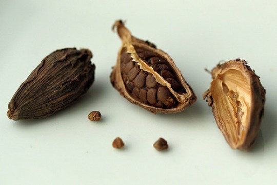 Image result for black cardamom