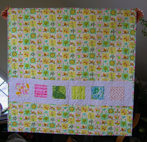 Nicey Jane Quilt Back